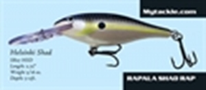 Picture of Kevin VanDam KVD Rattling Square Bill - Sexy Ghost Minnow